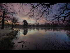 Chris Beesley-Winter Blues-Highly Commended.jpg