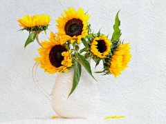 Fiona Lee-Sunflowers-Commended.jpg