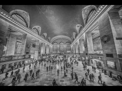 Gordon Mills-Grand Central Station mono-Very Highly Commended.jpg